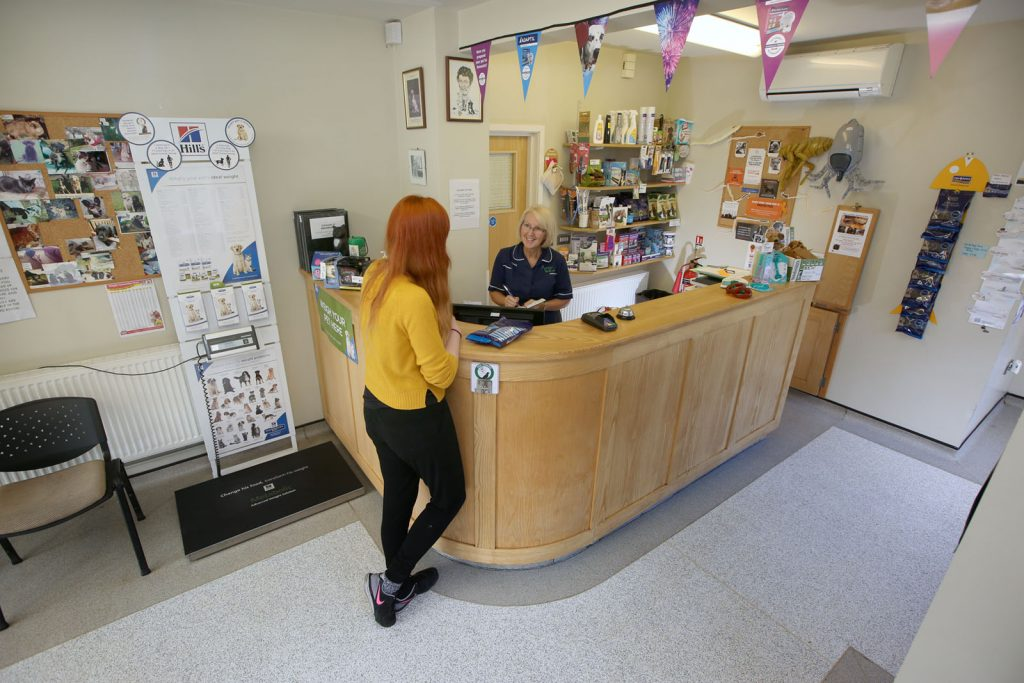 Woman talking to Ashleigh Vets Receptionist